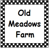 Charlottesville summer camps Old Meadows Farm